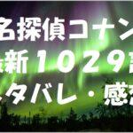 名探偵コナン最新1029話ネタバレ・感想!
